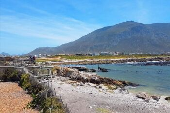 Betty\'s Bay, Whale Coast, Overberg