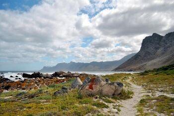Kogelberg Nature Reserve, Rooi-Els, Whale Coast
