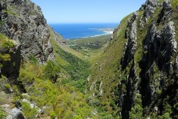 Gorge view, Betty\'s Bay, Whale Coast